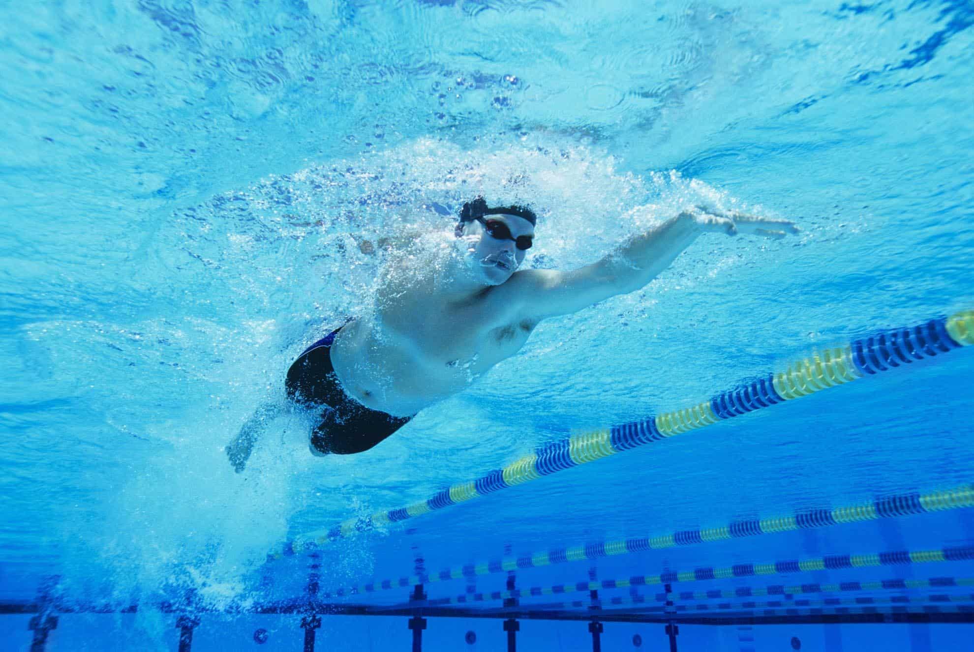 Programme de natation pour adultes